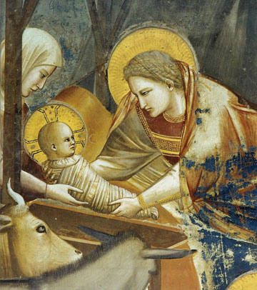 giotto-nativite.jpg