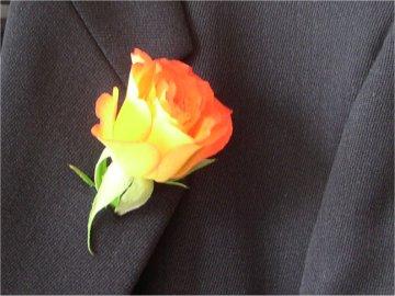 rose a la boutonniere